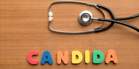 candida-and-biofilms